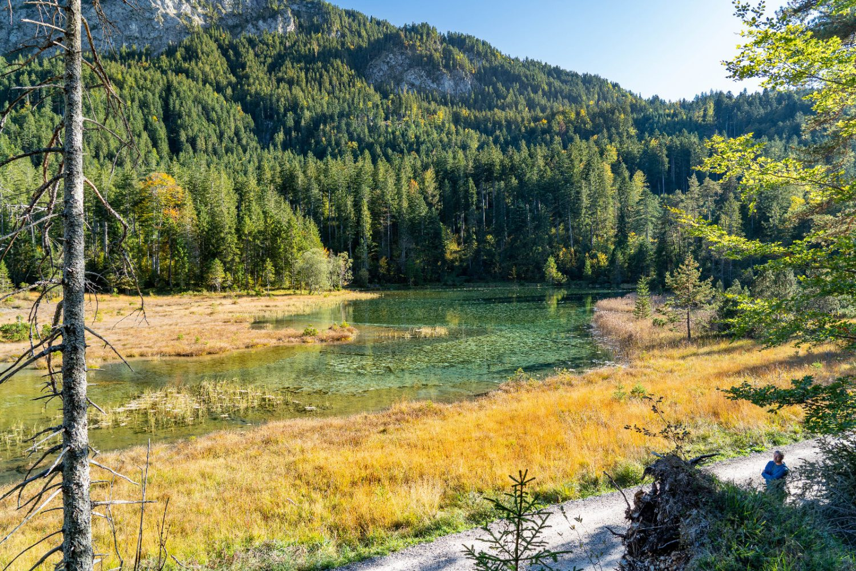 Moorsee vor Weißenbach im Lechtal
