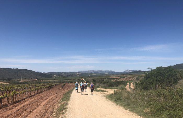 Pilger auf dem Jakobsweg durch die Rioja