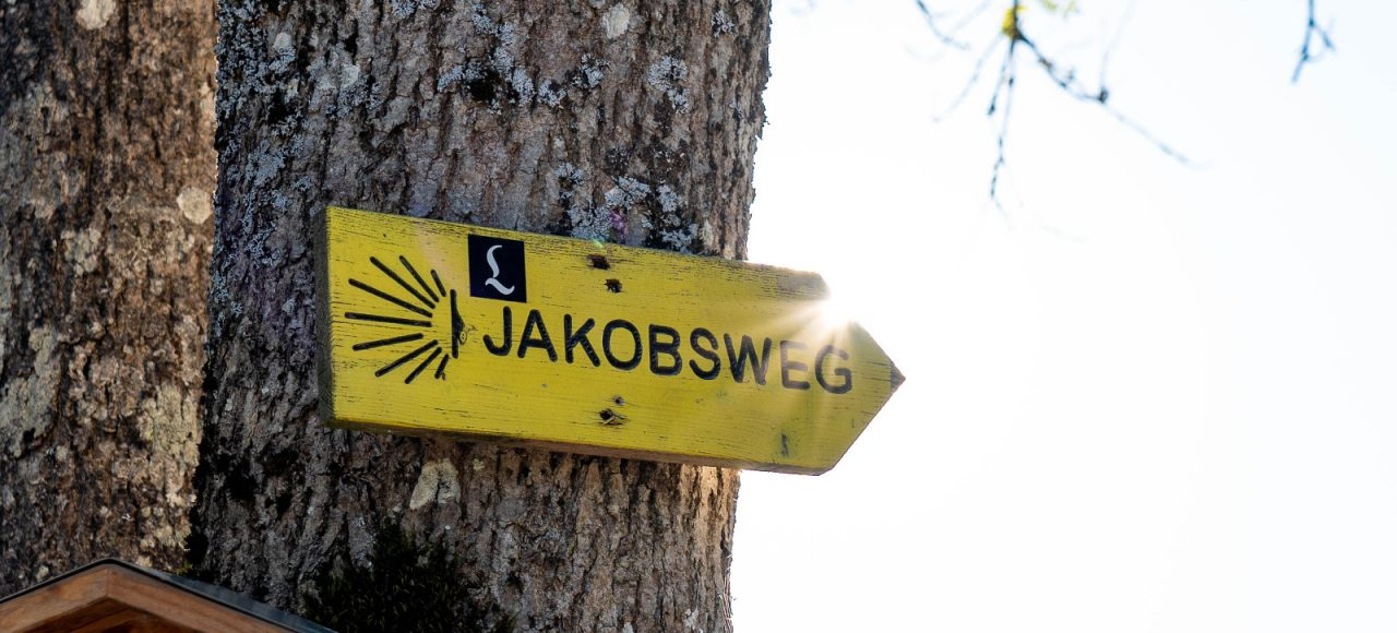 Jakobsweg Wegweiser im Sonnenlicht