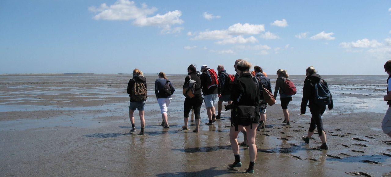 Gruppe Wanderer im Watt